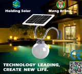 Integrated Monocrystal Panel Solar LED Lamp with Microwave Sensor