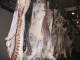 Halal Slaughter Machine for Pig Slaughterhouse Abattoir Equipment