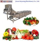 Industrial Fresh Fruit Vegetable Processing Machinery Cleaning Equipment