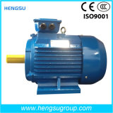 Ye2 0.75kw Series Three-Phase Cast Iron Induction Electric Motor
