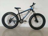 26 Size Fat Tyre Mountain Bicycle with Gear
