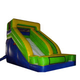 Inflatable Playground Equipment Used Slide for Sale