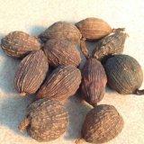 Dried Fructus Amomum Tsaoko Tsao Ko Amomum Fruit Cao Guo