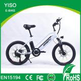 Wholesale E-Bike for Kids