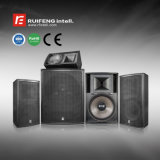 Home Theater Full Range Professional PA Sound System DJ Speaker