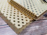 Kraft Paper File Folder with Foil Stamping 30X30cm