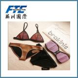Factury Price Sexy Lady Fashion Underwear Bikini