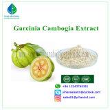 Natural Herbal Raw Stetoids Powder Garcinia Cambogia Extract Fat Loss