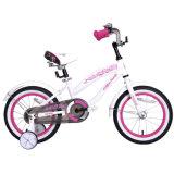 12/14/16 Inch Princess Children Girls Bicycle 2020