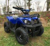 Newest Kid Electric 800W Mini ATV for Sale