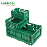 -18 Degree Celsius Cold Rooms Storage Stackable Foldable Plastic Crate