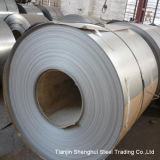 Premium Quality Stainless Steel Coil (904L)