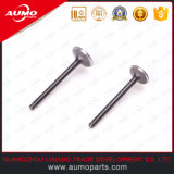 Wholesale Motorcycle Intake and Exhaust Valve Set Motorcycle Parts