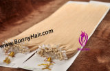 Discount Price Blonde Color Brazilian Human Remy Hair Micro Ring Hair Extension Micro Loop Hair Extension Micro Bead Hair Extension