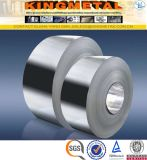 Hot/Cold Rolled 201/202/ 304 /316L Stainless Steel Coil Price