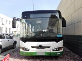 Kingstar Neptune D6 46 Seats City Bus Diesel 12 Meters Long