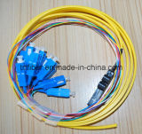 Flat Ribbon 12core Sc/Upc Fiber Optic Pigtail