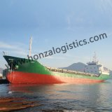 FCL Sea Shipping From Ningbo or Shanghai to Algiers