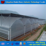 Econo-Growing Vegetalbe Plastic Film Garden Greenhouse for Fruit Tree Growth