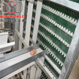 a Frame Best Price Poultry Farm Egg Layer Chicken Cages