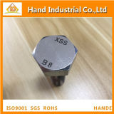 Stainless Steel ASME A193 B8 B8m M10X60 Hex Head Bolt