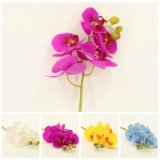 Personalized Real Touch Orchid Spray with Flowers Home Decoration Dy4-24