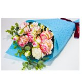 Fashion Color Cheap PP Non-Woven Fabric for Packing Flower