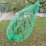 Green Color Reusable HDPE 70*90 and 80*100cm Drawstring Monofilament Mesh Bag Date Palm Mesh Net Bag for Date Protecting Covering