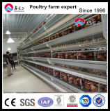 Poultry Farm Use Egg Laying Chicken Cage