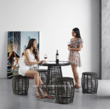 Cheaper Price Top Quality Outdoor Garden Furniture Wicker Furniture Garden Set (YT806)