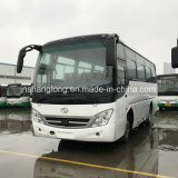 37 Seats Passenger Bus for Sale