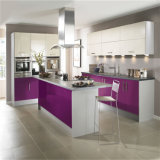 Modern India Display Cabinet Kitchen with Island