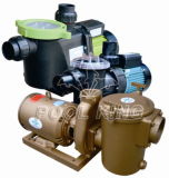 Self-Priming Residential Swimming Pool Pump for Water Pump