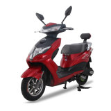 EEC Approved Adult Electric Bike Motor 2 Wheel Electric Scooter Motorcycle with Lithium Battery