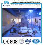 Clear Plexiglass Acrylic Sheet Aquarium of Restaurant Project Price