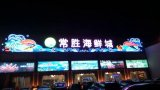 Outdoor LED Advertising Light Source