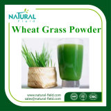 Wheat Grass Juice Powder for Lose Weight