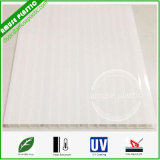 Twin-Wall Polycarbonate PC Plastic Glazing Sheet / Panel with UV Coating