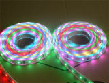 5050 Rgbww 4 in 1 LED Strips in Various Lengths