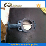 Cast Iron Flange Resilient Seated Wafer Butterfly Valve