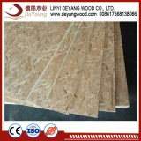 Poplar Hot Sell Timber OSB Board for Exportting E0 E1