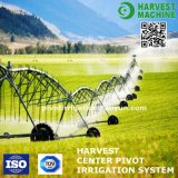 Agriculture Farm Center Pivot Irrigation System