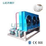 Top Manufacturer Lier 5ton Flake Ice Machine with Bitzer Compressor for Seafood Processing
