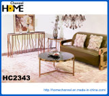 Modern Home Furniture Stainless Steel Tea Table (HC2343)