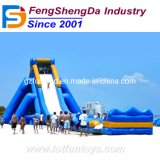Outdoor Inflatable Bouncer Water Slide Bouncy Sliding Amusement Toy (WS-01)
