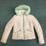 Windproof Pink Lady Padded Jacket with Hood Fur Sy-1803