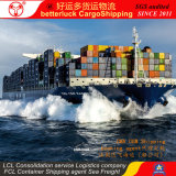 Shenzhen Loading Delivery to Port Kelang Malaysia Container Shipping agent