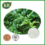 Vine Tea Extract Dihydromyricetin 98% Protecting Liver