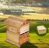 Beekeeping Hive Auto Wooden Bee Hive Honey Bee Box for Sale Automatic Wood Beehive
