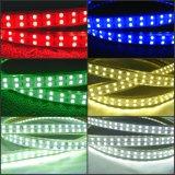 120LED/M 5050 LED Rope Light LED Decorative Strip Light Double Line